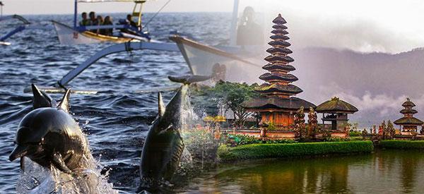 Lovina Dolphin Bedugul Tour