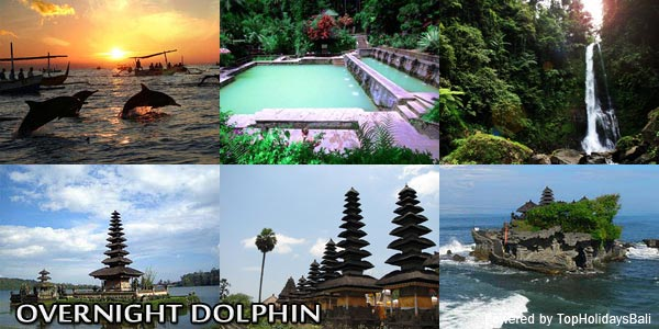 Overnight Dolphin Tour 2D 1N